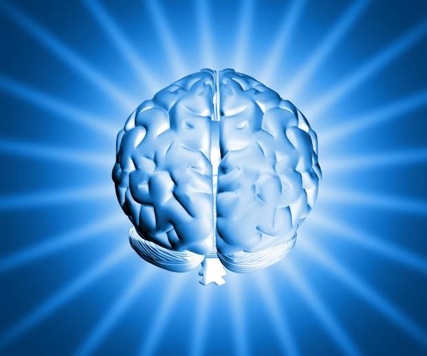 https://insanveevren.files.wordpress.com/2011/05/brain.jpg?w=300
