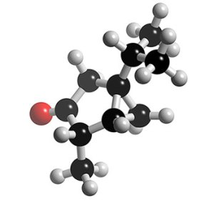 https://insanveevren.files.wordpress.com/2011/05/molecule.jpg?w=300